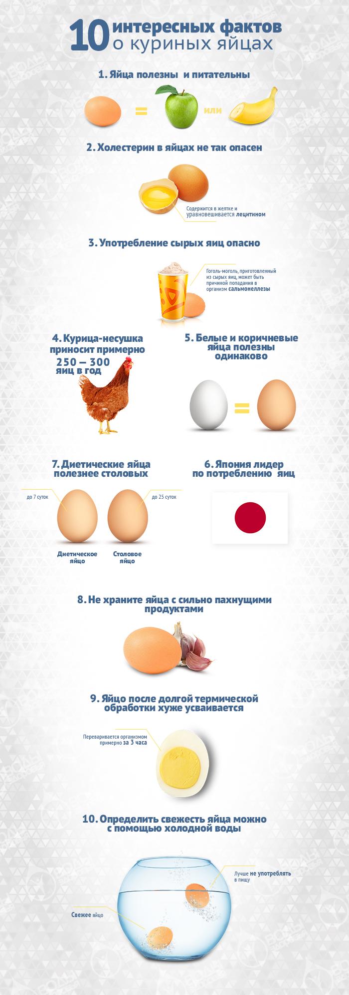 Почему яйца нельзя есть каждый день