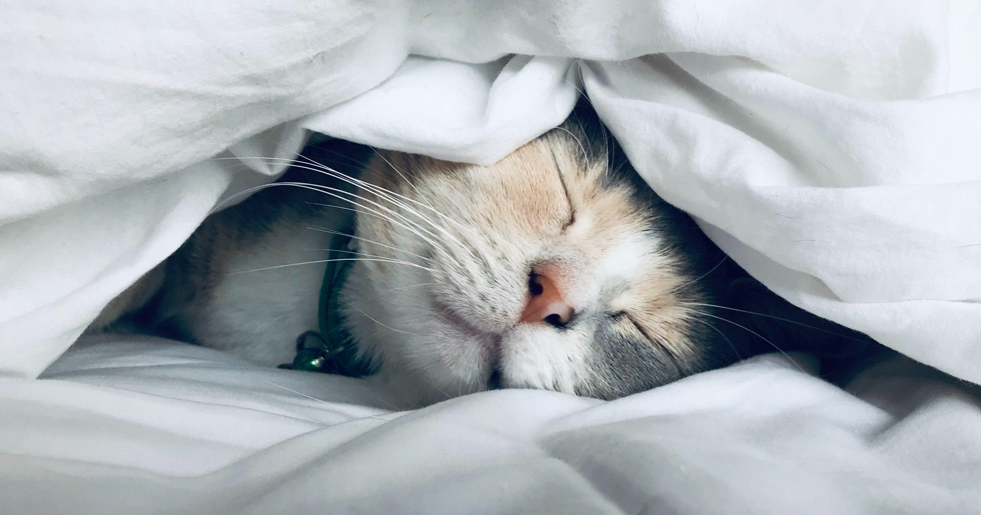 Как улучшить сон?