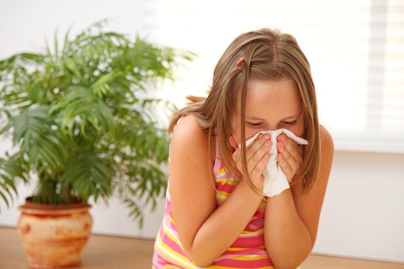 На какие цветы может быть аллергия